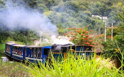 Tamilnadu Nilgiri Mountain Railway