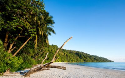 Andaman - HAVELOCK ISLAND ANDAMANS